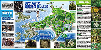 番所山自然観察ガイドブック2